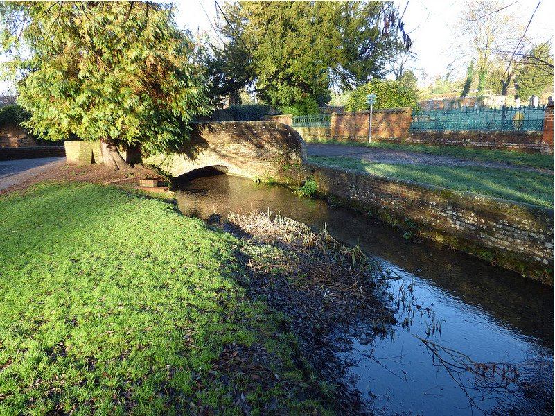 River Misbourne, Church Mead. Photo by John Suckling