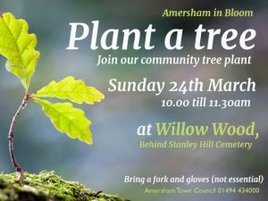 Community Tree Plant @ Willow Wood