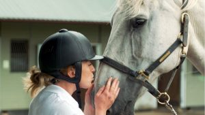 The Horse Trust Talk