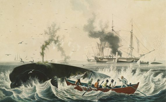 South Sea Whale Fishery, 1830s © E. Duncan, Public domain, via Wikimedia Commons